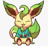 阳光绿猫的头像