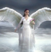 woundedangel的头像